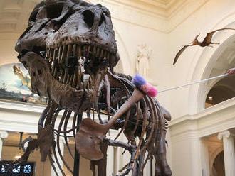 Milliárdos vagy, és még nincs otthon T. rexed?