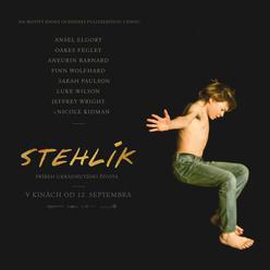 Do kín prichádza film Stehlík s krásnym príbehom o smútku a láske