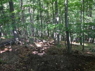 Foto: Pozostatky Steva našli v lese vo Veľkej Fatre, vraždu si mala objednať manželka Katarína