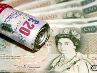 Brit utratil 30.000 liber ve snaze vyhnout se stolibrové pokutě