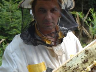 7 dobrých správ: Najlepší med na svete vyrábajú na východe Slovenska