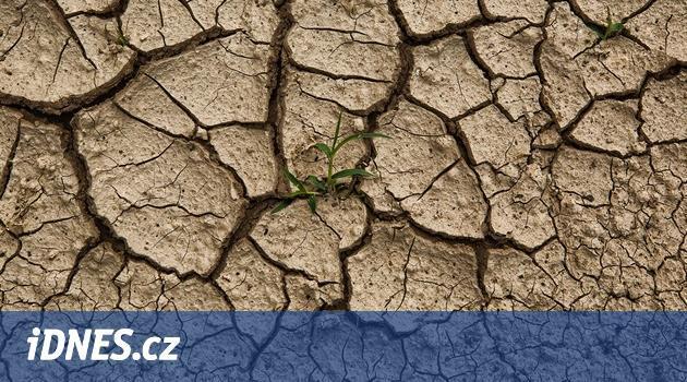 Pozor na pohádky o suchu, píše v eseji agrární analytik Petr Havel
