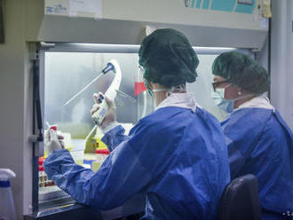 Pri podujatiach nad šesť ľudí musí mať každý negatívny RT-PCR test