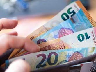 Zastúpenie základných výdavkov na spotrebe slovenských domácností patrí k najvyšším v EÚ