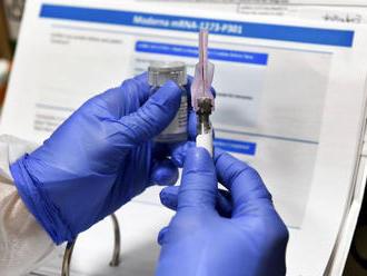Slovensko chystá vakcinačný plán, očkovanie má byť dobrovoľné