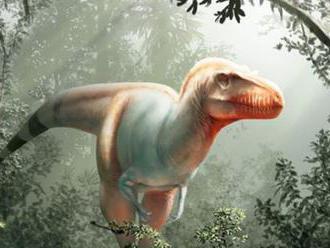 Objavili nový druh tyranosaura. Dostal meno Žnec smrti