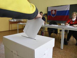 Doplňujúce voľby sa odkladajú, ohlásil nový šéf parlamentu