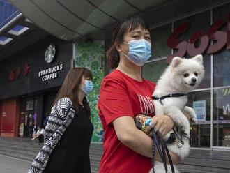 ONLINE: WHO pôjde do Číny zisťovať pôvod koronavírusu