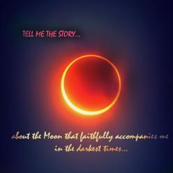 Haf 7. – Potraty na ďalší pokus. . .
