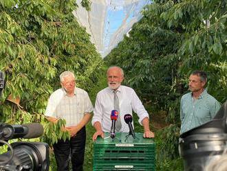 Mičovský: Slovensko sa môže stať ovocinárskym rajom