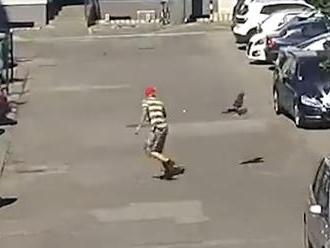 VIDEO: V Malackách útočí na ľudí agresívna vrana. Incident zachytila policajná kamera