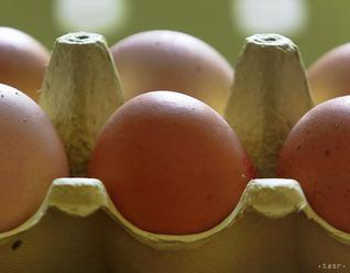 Spotrebitelia by mali byť pri skladovaní a preprave vajec zodpovední