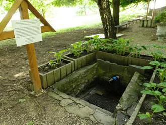 Nová Ves nad Žitavou  chce obnoviť historický vodný systém v parku