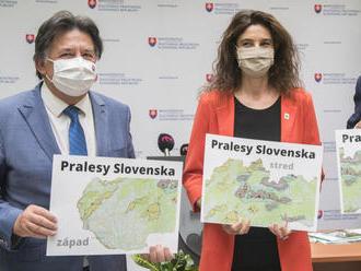Presný termín vyhlásenia Pralesov Slovenskej republiky ešte nie je známy, odkázal Budaj