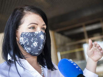 Kavecká predložila zmeny, Bittó Cigániková kritizuje proces v pléne