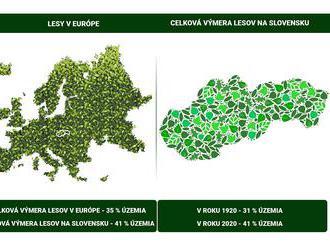 Skvelá správa: Lesnatosť v Európe dlhodobo stúpa