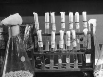 Flemingov objav penicilínu zahájil revolúciu v medicíne