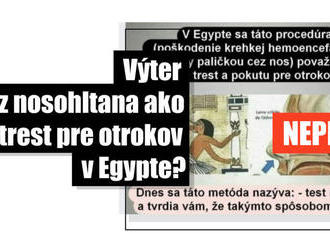Zdieľaný obrázok Egypťanov nemá nič spoločné s testom na Covid-19