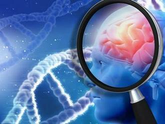 Imunitné bunky spočiatku bojujú proti nádoru mozgu, potom 'zbehnú' a chránia ho
