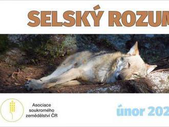 VIDEOSERIÁL Selský rozum - návrat vlka do české krajiny