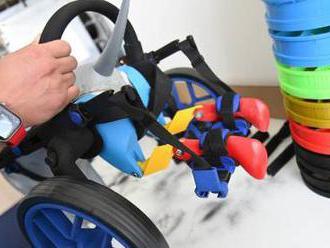 Invalidní vozík pro psy má cenu Red Dot za design