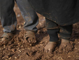 Sýrske vládne sily usmrtili sedem ľudí vrátane troch detí