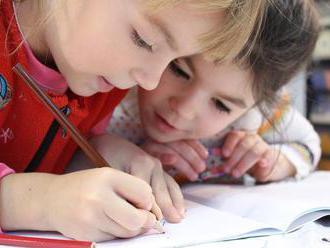 Prieskum: Problémom v dištančnom vzdelávaní je socializácia detí, tvrdia rodičia