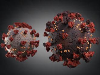 Obrat v pátraní po lieku na COVID-19. Vedci zistili, že pomáha bežne používaný liek na astmu