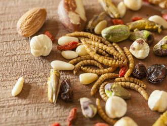 EÚ prvýkrát povolila zaradenie hmyzu do zoznamu potravín na trhu. Pozrite sa, ktorý druh