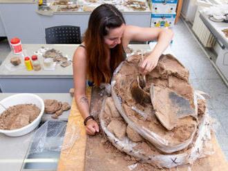 Archeologové na Náchodsku našli pravěká sídliště i důkazy o boji z roku 1866