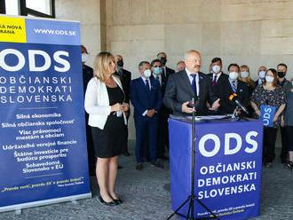 Občianski demokrati Slovenska začali so zberom podpisov na vznik strany