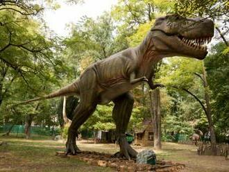 Po zatvorení DinoParku čelí bratislavská ZOO prepadu počtu návštevníkov