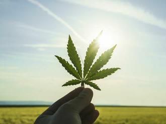 Petíciu za dekriminalizáciu marihuany podpísalo viac ako 13-tisíc ľudí