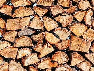 Štípačky na dřevo při vytváření zásoby topiva na zimu ušetří čas i námahu